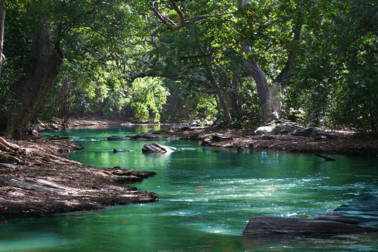 cleanest watering holes springfield mo ozarks aquasani water purification missouri safest family fun in the sun